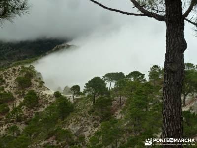 Axarquía- Sierras de Tejeda, Almijara y Alhama; rutas para caminar; ruta de senderismo